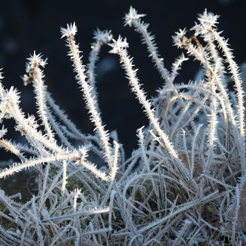 Pikkukukko lajitteluasemat talviaukioloaikoihin